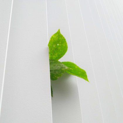 Abrir + Sustentável